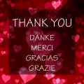 SONG: THANK YOU -  DANKE - MERCIE - GRACIAS - GRAZIE